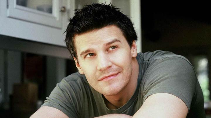 David Boreanaz Smiling Sitting Pose In Grey T-Shirt